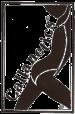 logo_callanetics